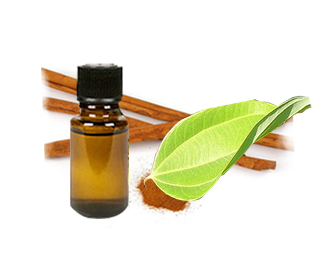Cassia Oil (Cinnamomum oil)